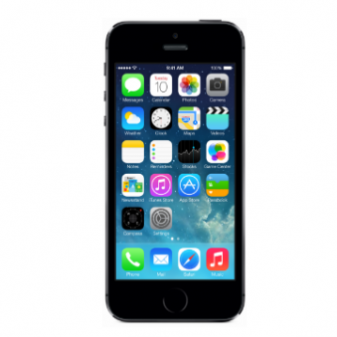 Диагностика Apple iPhone 5S